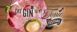Image of the Gin To My Tonic Festival in Hull